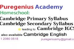 PureGenius Academy - Homeschool
